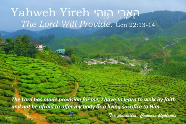Yahweh Yireh Cameron Highlands copy